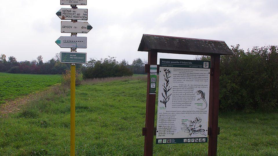 Přírodní památku si můžete prohlédnou i při procházce značenou cestou z Krčmaně do Grygova