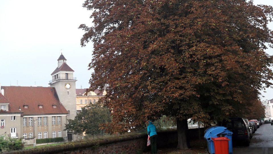 Ulice Nábřežní, Olomouc