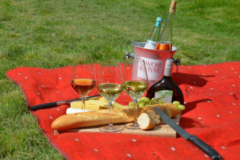V jakých parcích si můžete bez obav udělat piknik?