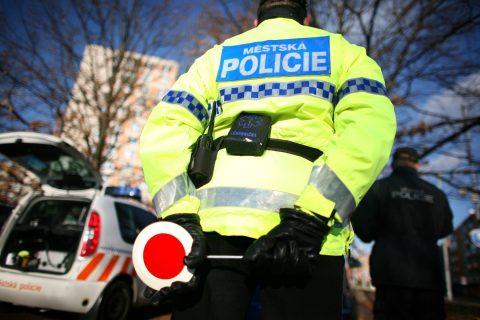 Městská policie (ilustrační  foto)